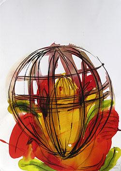 'Flors engabiades2. Formentera III' de Andreu Buenafuente