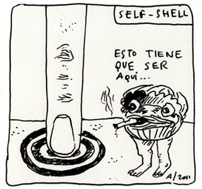 Self Shell 13